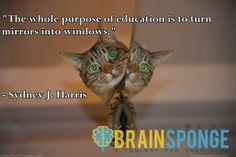 Education allows you to see more...