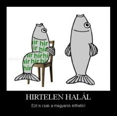#haláll Bad Memes, Funny Memes, Jokes, It's Funny, Best Funny Pictures, Funny Photos, Funny Fails, I Laughed, Haha