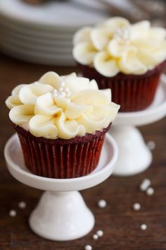 Moist and delicious, these red velvet cupcakes are decorated with pretty cream cheese icing flowers. As pretty as they are tasty, this simple piping technique is easier than you think! Red Velvet Cupcakes, Mini Cupcakes, Cupcake Cakes, Flower Cupcakes, Cheesecake Cupcakes, Simple Cupcakes, Cupcake Day, Gold Cupcakes, Decorated Cupcakes