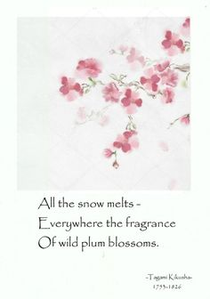 All the snow melts -Everywhere the fragrance of wild plum blossoms. Plum Quotes, Blossom Quotes, Buddhist Wisdom, Buddhism, Japanese Haiku, Shine Quotes, Poem A Day, Interesting Quotes, Fact Quotes