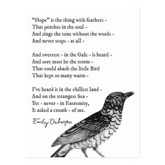 Shop 'Hope' Emily Dickinson Inspirational Poem Postcard created by wordstolivebydesign. True Love Poems, Love Quotes Poetry, Poem Quotes, English Love Poems, Great Poems, Silence Quotes, Life Quotes, Scripture Quotes, Crush Quotes