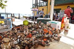 Fresh oysters in Boqueron