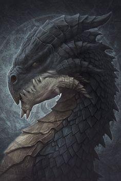 Shadow Dragon by Kerem Beyit Mythological Creatures, Fantasy Creatures, Mythical Creatures, Fantasy Dragon, Fantasy Art, Figurine Dragon, Shadow Dragon, Legendary Dragons, Dragon Sketch