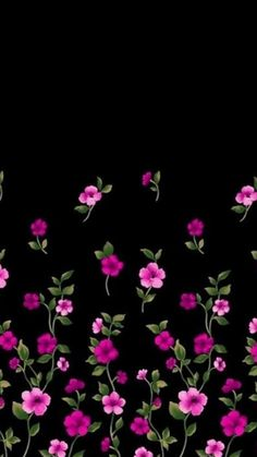 Black and pink flowers