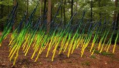 Natuurkunst Drenthe: Het perfecte bos, Ruo Bing Wang