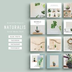 NATURALIS Social Media BIG Bundle A beautiful multipurpose Social Media Pack covering all bases with easy to use templates! Clean, modern and fully Social Media Branding, Social Media Design, Social Media Graphics, Flux Instagram, Instagram Design, Facebook Instagram, Instagram Posts, Website Design Inspiration, Design Ideas