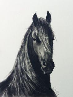 Dry brush oil painting Dry Brushing, Horse Art, Artsy, Paintings, Horses, Oil, Interior Design, Illustration, Animals