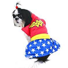Cão Maravilha #Maravilha