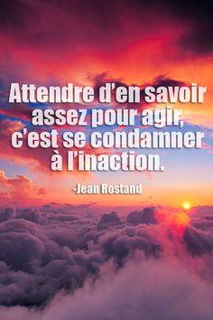#CitationDuJour « Attendre d'en savoir assez pour agir, c'est se condamner à l'inaction. » -Jean Rostand