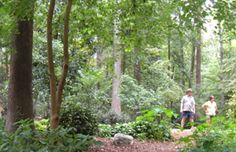 Hatcher Garden and Woodland Preserve--Spartanburg, SC