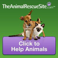 Click on the button on the Animal Rescue Site every day to feed shelter animals. It's a free click for you and the site ad sponsors donate $ that goes to feed animals in shelters and sanctuaries. Great cause. Put a daily reminder on your calendar and do it every day. All those clicks add up and make a difference in the lives of innocent animals. http://www.theanimalrescuesite.com