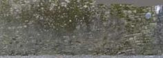 Free Textures for 3d,Dirty, Mossy, Wall, Stone, Europe, Architecture