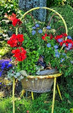 Chair planter…there's a cute little bird house tucked between the plants. Container Flowers, Container Plants, Container Gardening, Garden Chairs, Garden Pots, Beautiful Gardens, Beautiful Flowers, Chair Planter, Old Baskets