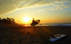 Surfing Board Beaches Sunset Ocean