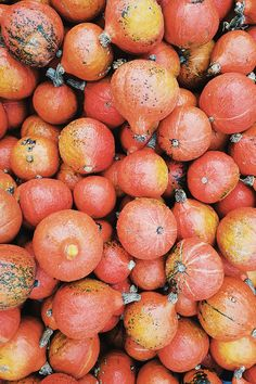 10 kreative Ideen für Hokkaido Kürbis Fruit, Vegetables, Food, Fall Vegetables, Creative Ideas, Essen, Vegetable Recipes, Meals, Yemek