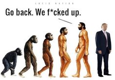 Evolution has led to Trump. We f*cked up! The most valuable free Entrepreneurial training you will receive this century don't delay click the link E Cards, Donald Trump, Religion, Funny Memes, Jokes, Funny Quotes, Political Satire, Political Ideology, Political Views