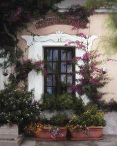 Enchanted Window by Deborah Bays