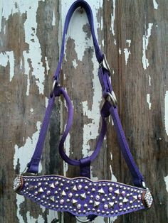 New! Light Purple Gator Bronc Noseband with silver studs and Swarovski AB clear rivots. Paired with a Weaver light purple halter with matching rhinestone conchos. Halter fits horses 800-1100#. Find more bronc halters on www.whinneywear.com