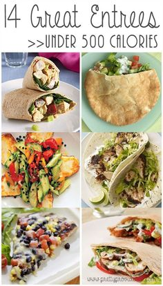 14 great entrees under 500 calories! Love being able to switch things up without ruining the diet!