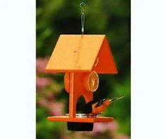 oriole feeders - Yahoo Canada Image Search Results