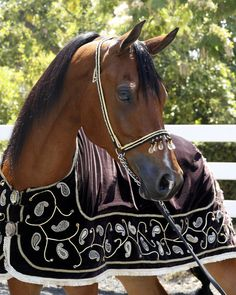 Luxurious Velvet  Horse  Blanket by MyOptimus on Etsy, $450.00
