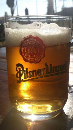 Pilsner...