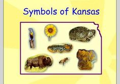 This is a smartboard file about Kansas Day I created for my classroom. You can edit the file to fit your needs (ie: our class is located in Wichita but you can update the file to show where your class is in Kansas. Kansas Day, State Of Kansas, Preschool Ideas, Preschool Crafts, Kansas Facts, Teaching Resources, Teaching Ideas, First Grade Science, January 29