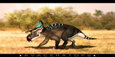 Avaceratops by TimelordLoki