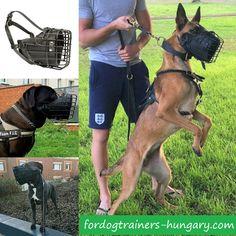 Gumírozott szájkosár a szolgálati kutyák számára. A kutya orra nem sérül még a támadások során sem. Katonai kinológusok által tervezett és tesztelt. Modell: M58 #szájkosár #muzzle #muzzletraining #kutyabolt #kutya #kutyak #magyarkutya Hungary