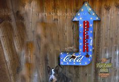 Beer Arrow Sign, Beer Sign, Custom Signs, Neon Signs, Custom logos, logo signs, Marquee Light, Bar Marquee Sign, Pub bar sign, beer arrow Marquee Letters, Marquee Lights, Tennessee Usa, Arrow Signs, Logo Sign, Pub Bar, Beer Signs, Vintage Room, Stage Set