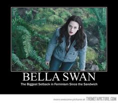 While this image is comedic, it also speaks a lot of truth. The Twilight series teaches women and girls that to be a woman one must be submissive and chained to a man. Further, the extremely dysfunctional dynamics between Bella and her suitors reveals unsettling expectations for relationships and opposite-sex relations. This series is an unfortunate socializing agent.