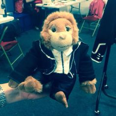150615 @OfficialMarkO: I've just met Colin the T.T monkey who's been on several tours with us. Here he is in his Shine outfit Love M.O X