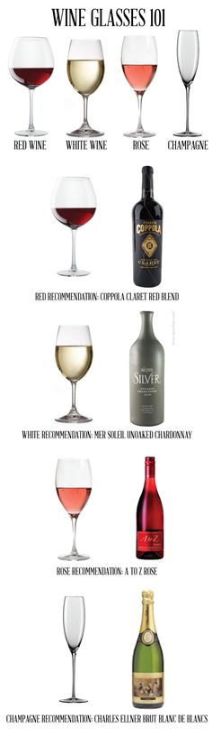 Wine glasses 101