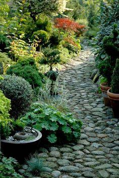 Love this garden pathway! Back Gardens, Outdoor Gardens, Shade Garden Plants, Cacti Garden, Japanese Garden Design, Woodland Garden, Garden Cottage, Outdoor Landscaping, Dream Garden