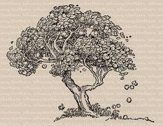 Old Apple Tree Illustration - Vintage Clip Art Image – Autumn Digital Stamp – Printable Transfer Gra Vintage Clip, Vintage Style, Etsy Vintage, Scrapbook Kit, Apple Tree Drawing, Drawing Trees, Tree Sketches, Tree Images, Plant Illustration