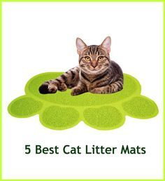 5+ Best Cat Litter Mats That Prevent The Spread Of Cat Litter ... see more at PetsLady.com ... The FUN site for Animal Lovers
