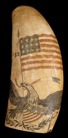 Scrimshaw whale's tooth with spread-wing eagle clutching a shield. Sold in the 2013 Maritime Arts Auction.