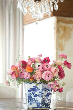 FRENCH COUNTRY COTTAGE: pink ranunculi in blue and white container