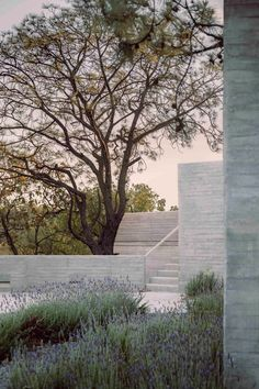 """Guadalajara-based Pérez Gómez said the effect is intended to make it look as though the walls """"emerged from the Earth"""". Concrete Forms, Concrete Houses, Concrete Design, Concrete Wall, Modular Housing, Concrete Interiors, Open Staircase, Architectural Section, Brickwork"""