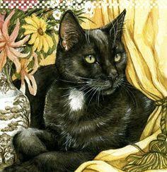 Cat portraits.  Debbie Cook