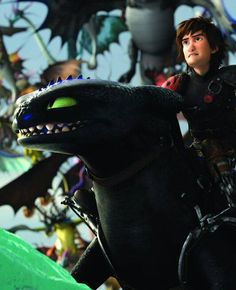 """This is what it is to earn a dragon's loyalty""  -Hiccup"