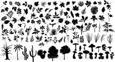 Plants black, botany, branch, bush, floral, flower, forest, garden, grass, herb, isolated, leaf, maple, meadow, mushroom, nature, oak, ornament, palm, pattern, plant, poppy, shape, silhouette, spring, stem, summer, symbol, tattoo, tree, Plants