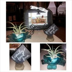 Photo block, air plant in blue mercury glass, vintage flower pin block.