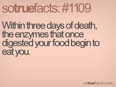 Within three days of death, the enzymes that once digested your food begin to eat you.