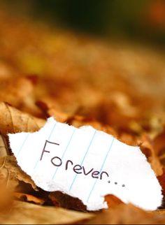 Forever... #ForeverHoliday