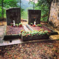 Fiori e sassi per salutare chi non lascia il nostro cuore #maremmans #pitigliano #invasionidigitali #ilmiopatrimonio