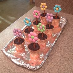 Sugar cone/Nilla wafer pots, Oreo and cream cheese dirt, and pretzel and m&m flowers