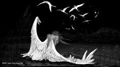 FERDOW - Angels Falling (Original Mix)  2017