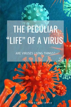 """The Peculiar """"Life"""" of a Virus - Kristin Moon Science Biology Lessons, Science Lessons, Science Projects, Life Science, High School Biology, Middle School Science, High School Activities, Hands On Activities, Science Curriculum"""