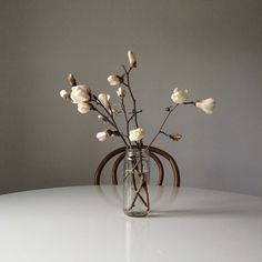 elenamjacobs:- such a nice simple vase  Janine Tollady